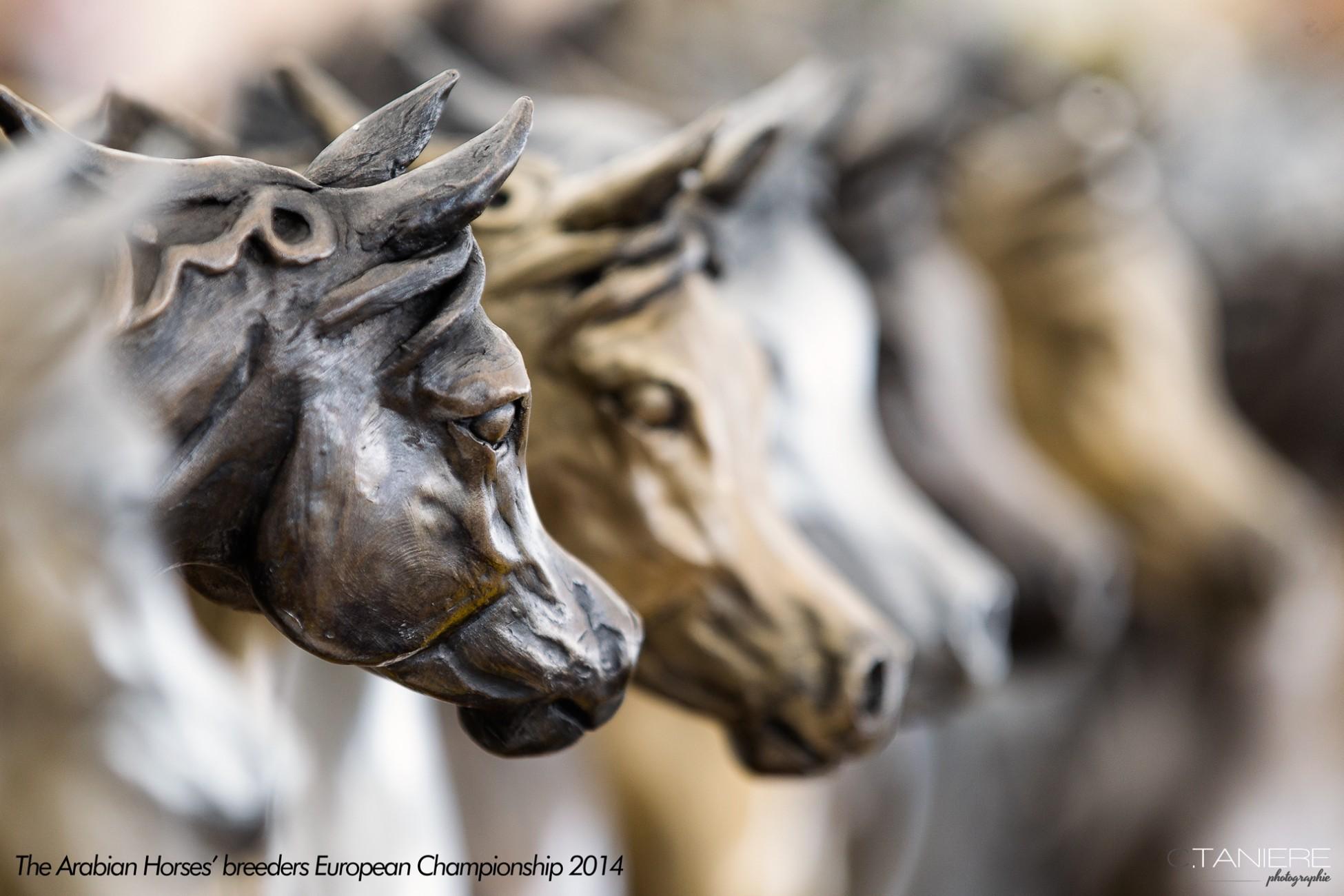 AHO-Breeders-2014-28