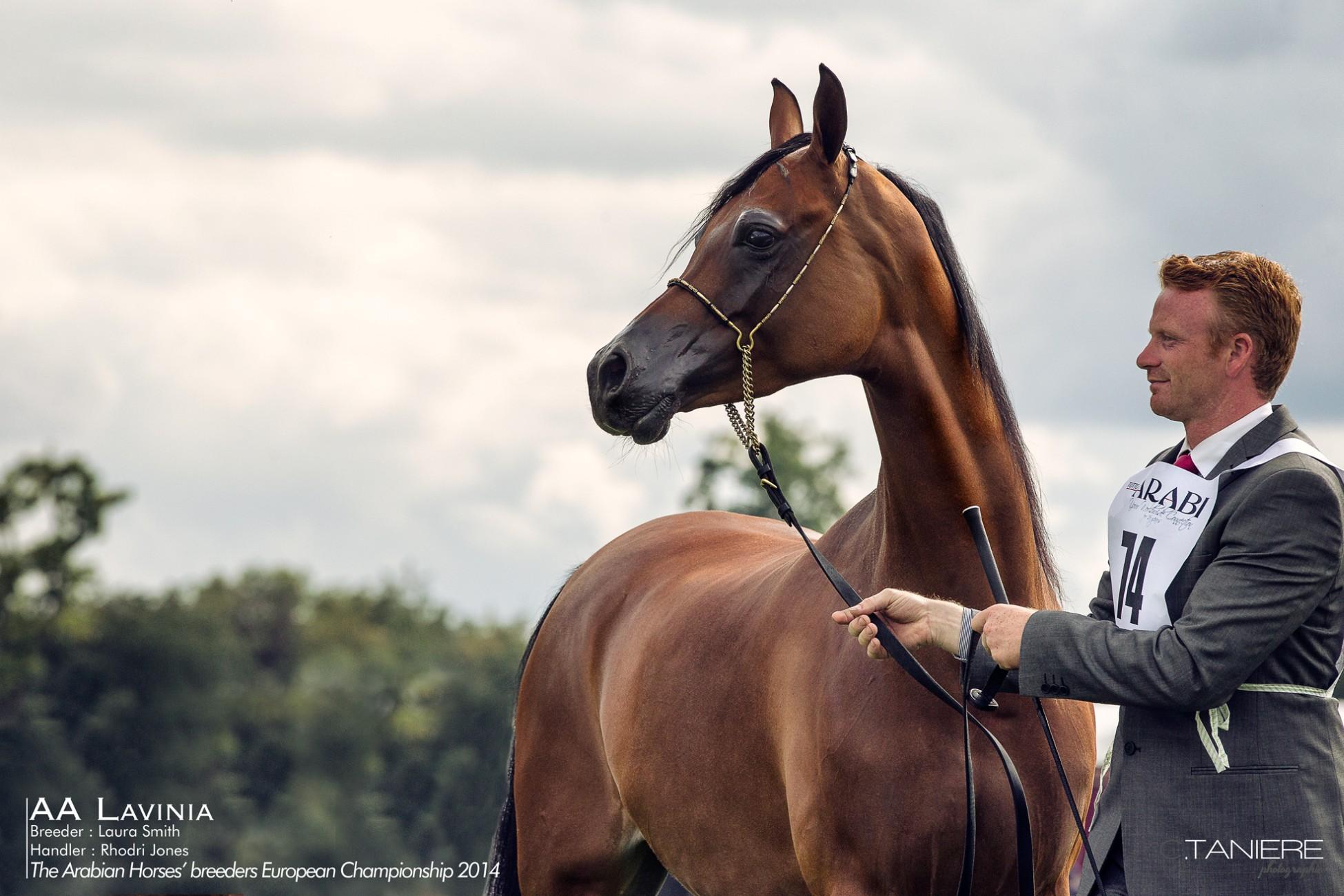 AHO-Breeders-2014-9