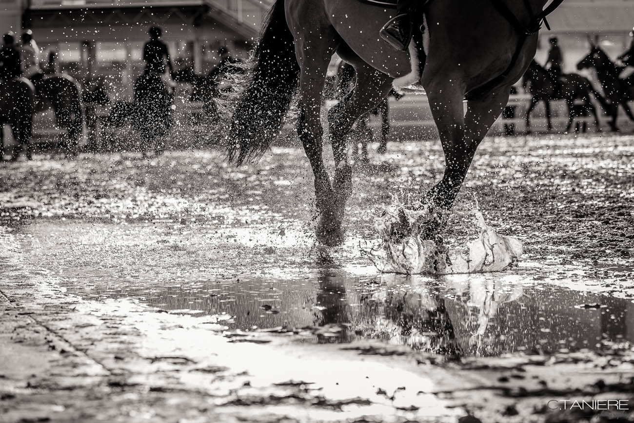 04_pieds-cheval-galop