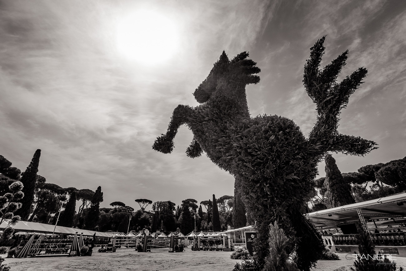Arena-Rome-Piazza Di Siena
