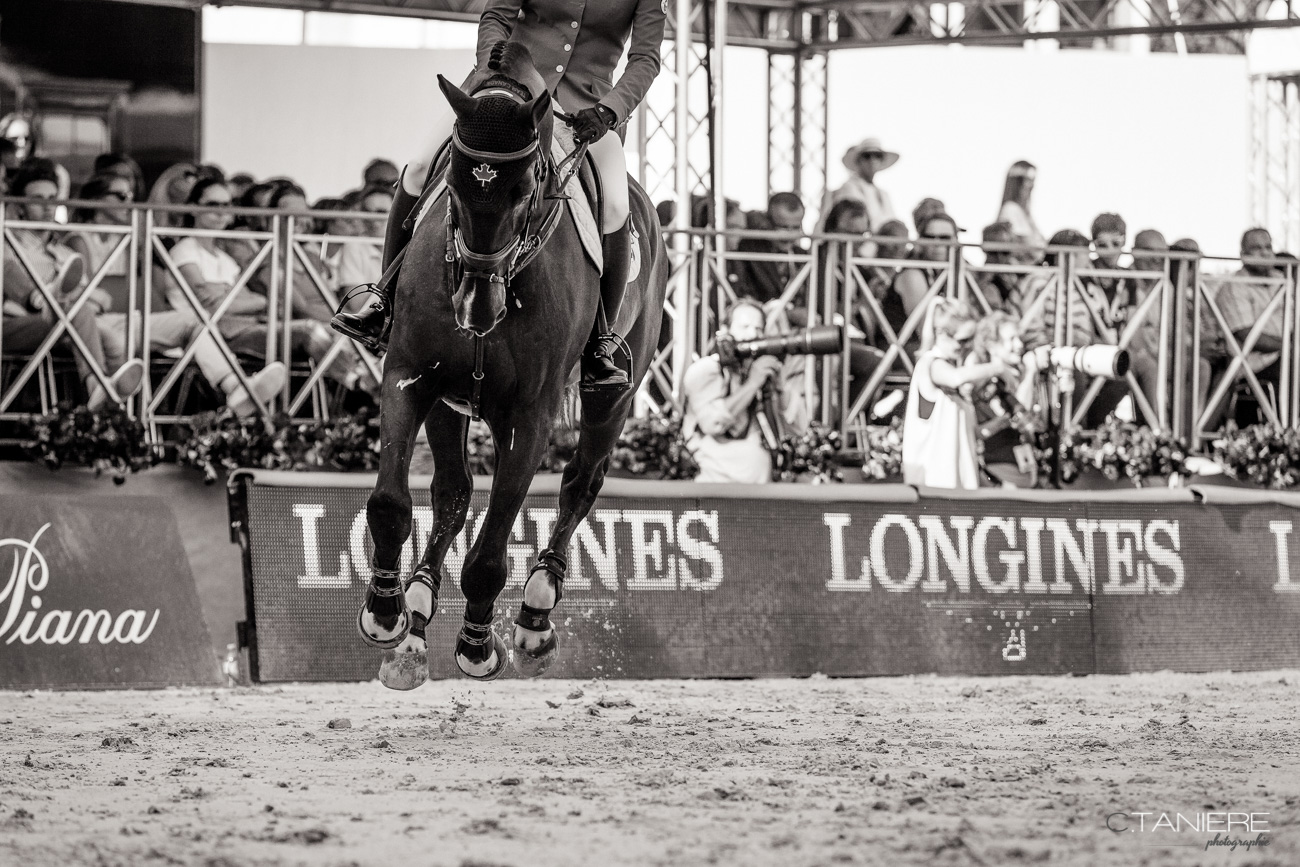 Horse-arena-jumping