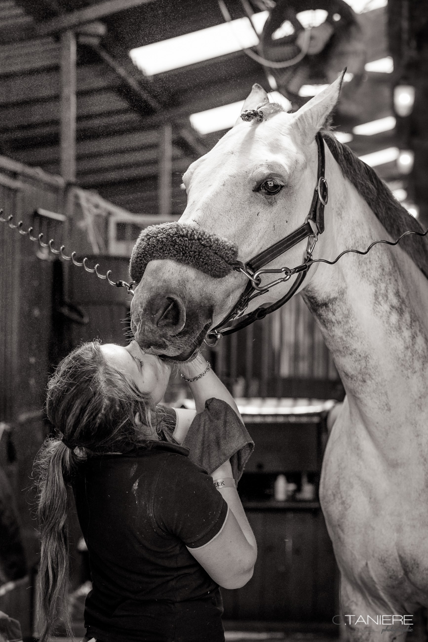 Kiss-Horse-Stable-Groom