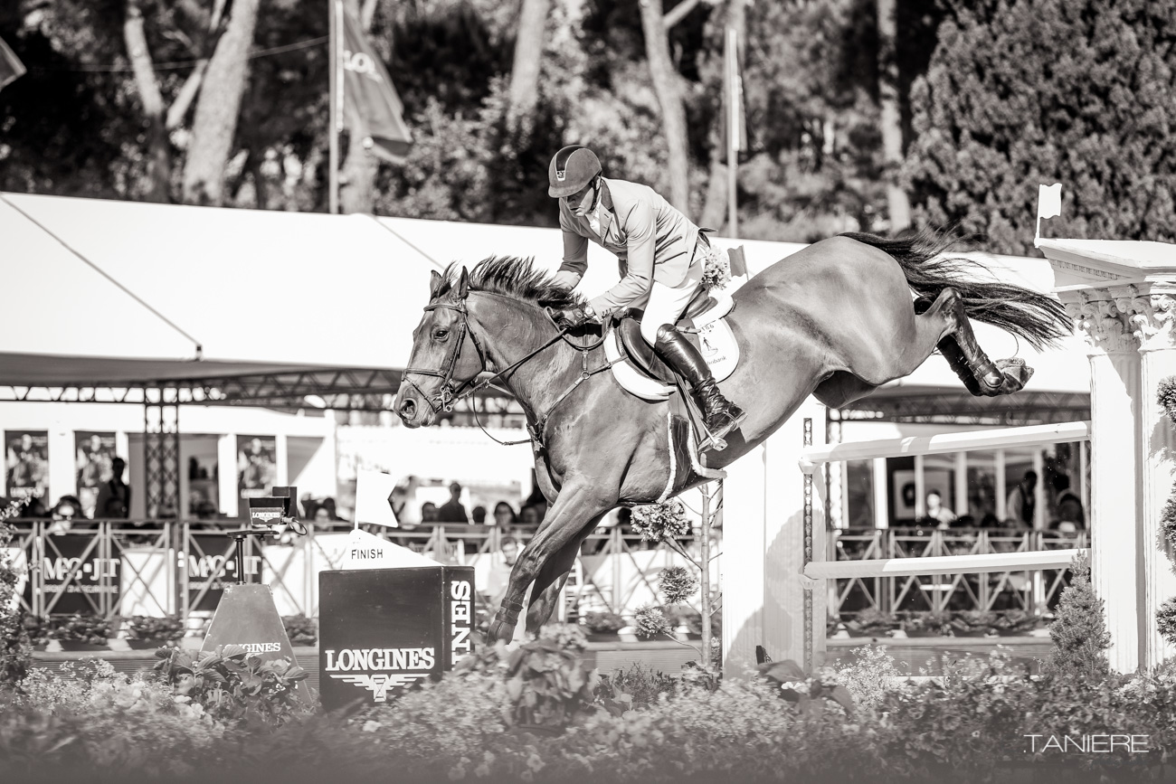 SFN Zenith NOP-Horse-Rome