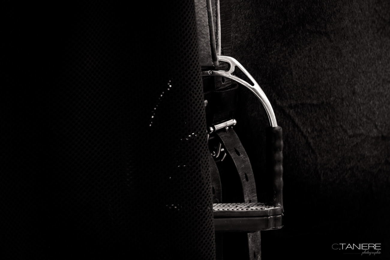 Stirrup-Black and White