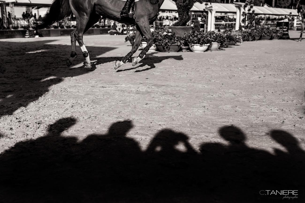 team-shadow-horse