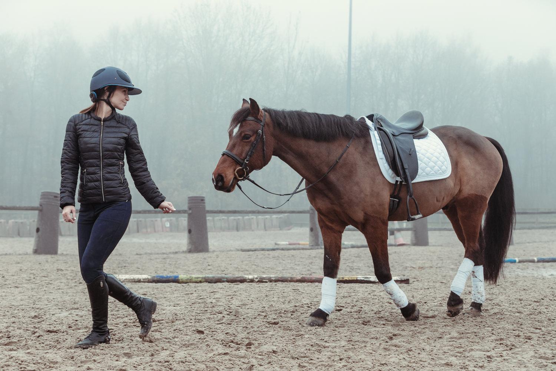 cheval mode